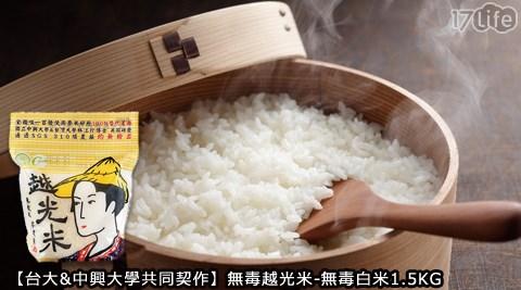 台大/中興/大學/契作/無毒/越光米/白米/綠巨人/玉米