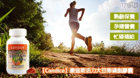 Candice/康迪斯/活力/大豆/卵磷脂/膠囊